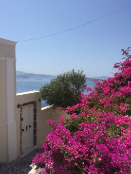 A burst of color in Santorini, GR